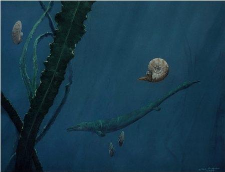 Doug Henderson_Mosasaur and Ammonites Montana