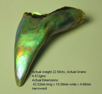 karipearls com abalone pearl
