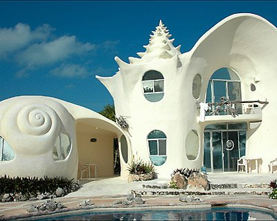 harmonyandhome blogspot com conch moonsnail shell house