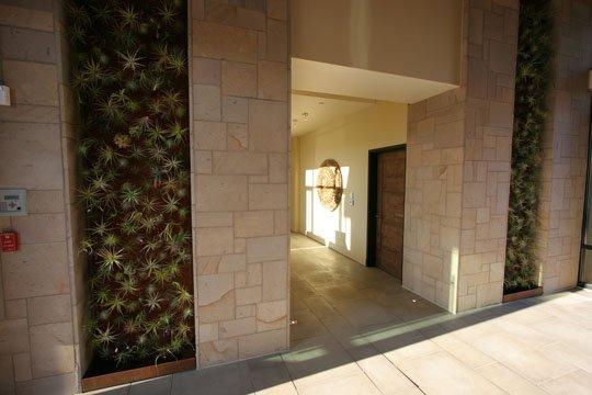 apartmenttherapy com tillandsia wall garden at Bardessono hotel 2