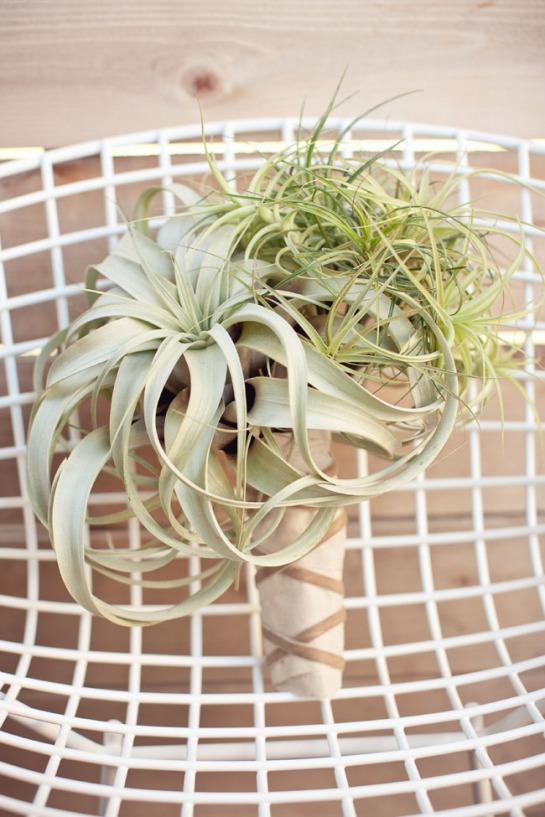 greenweddingshoes com tillandsia airplant-bouquet1