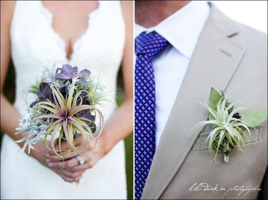 jennathanwedding blogspot com jenny and nathans wedding tillandsia bouquet and boutennier landmark-vineyards-wedding-photographer-014 air plants