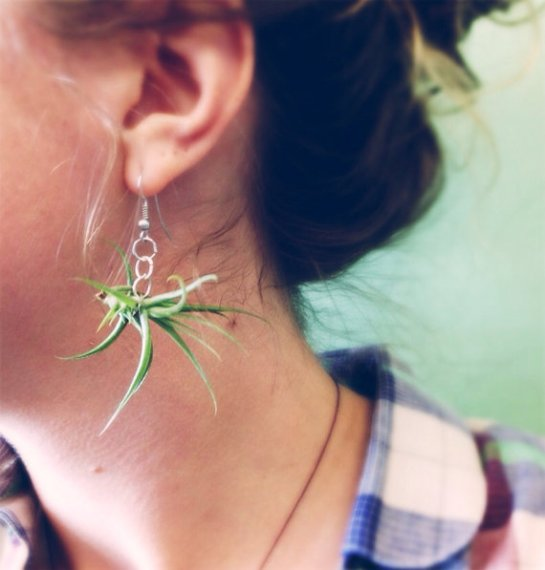 mykissloveart etsy tillandsia earrings