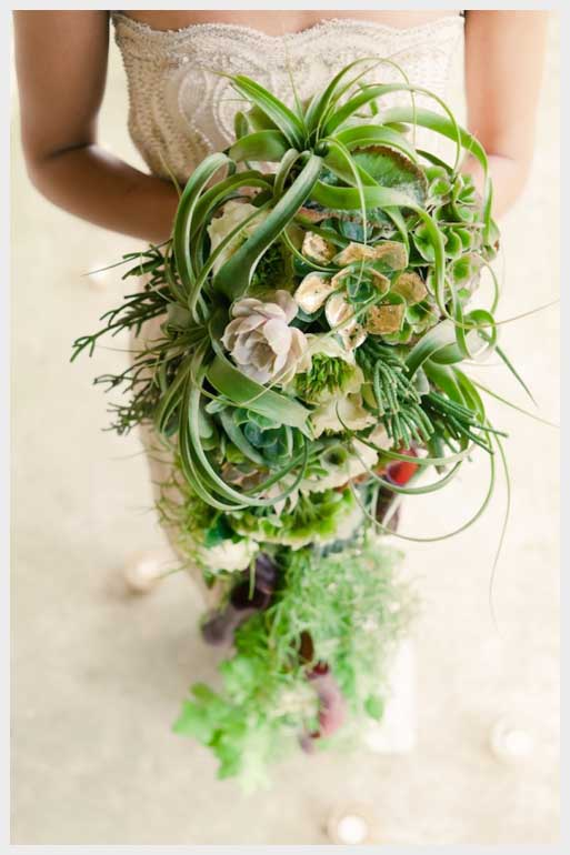plectrumbanjo com amazing cascading living bouquet Unusual-wedding-bouquet-with-succulents-and-air-plants