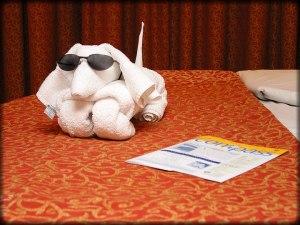 jaddie com towel_dog